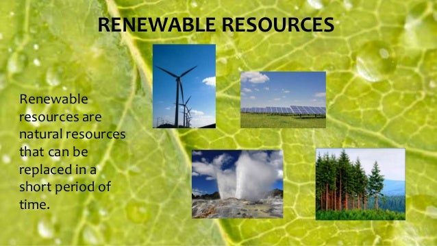 What Is A Natural Resource That Can Be Replaced