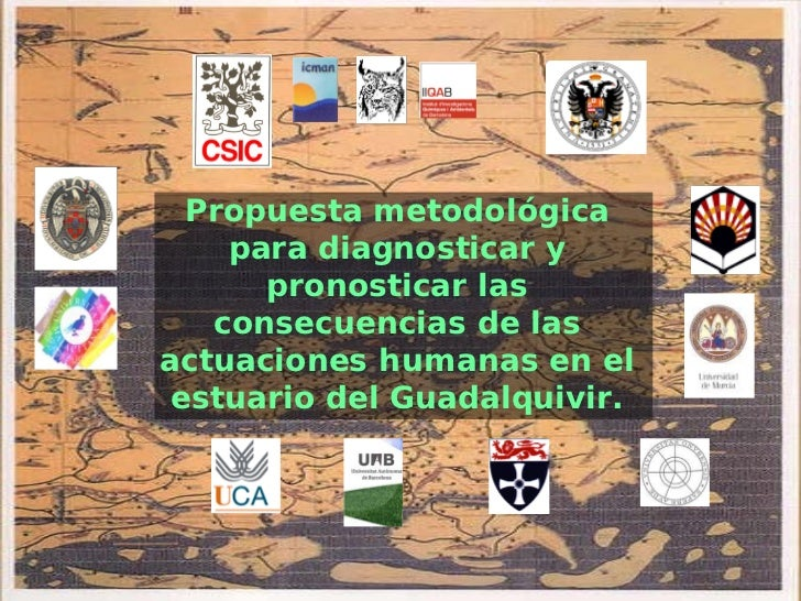 Propuesta metodológica    para diagnosticar y      pronosticar las   consecuencias de lasactuaciones humanas en el estuari...
