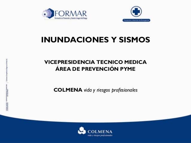 INUNDACIONES Y SISMOS VICEPRESIDENCIA TECNICO MEDICA ÁREA DE PREVENCIÓN PYME COLMENA vida y riesgos profesionales