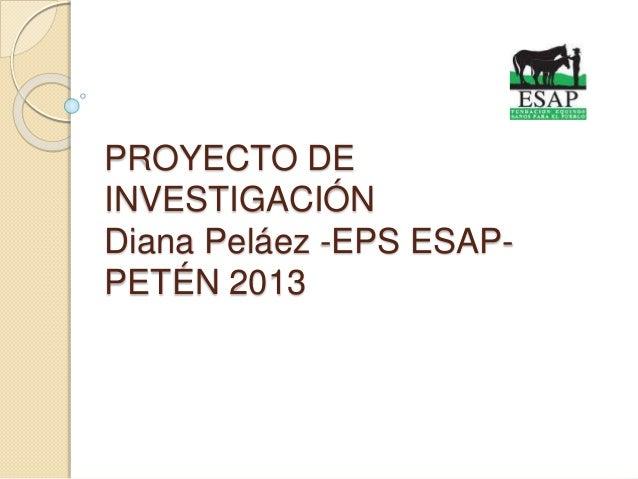 PROYECTO DE INVESTIGACIÓN Diana Peláez -EPS ESAP- PETÉN 2013