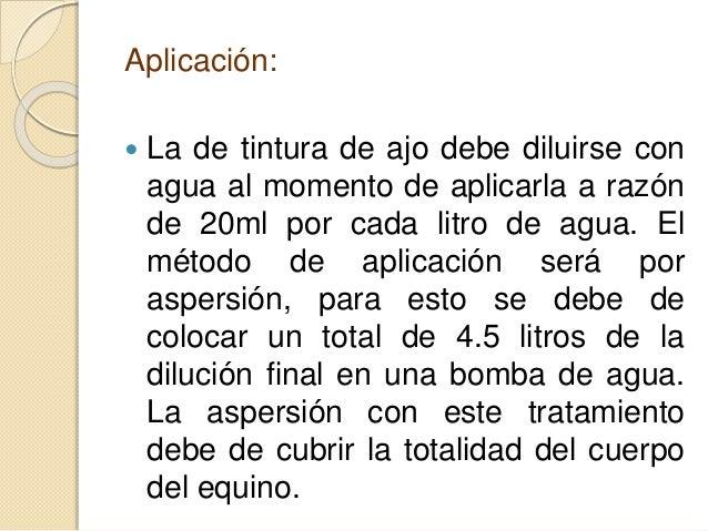 Aplicación:  La de tintura de ajo debe diluirse con agua al momento de aplicarla a razón de 20ml por cada litro de agua. ...