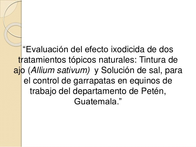 """""""Evaluación del efecto ixodicida de dos tratamientos tópicos naturales: Tintura de ajo (Allium sativum) y Solución de sal,..."""