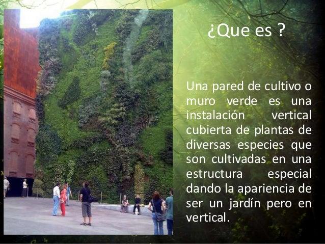 Jardines verticales for Que es un jardin vertical