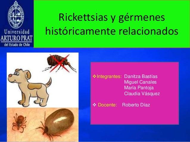 Rickettsias y gérmenes históricamente relacionados Integrantes: Danitza Bastías Miguel Canales María Pantoja Claudia Vásq...