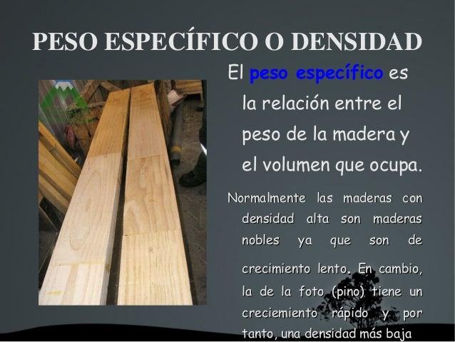Presentacion madera for La beta de la madera