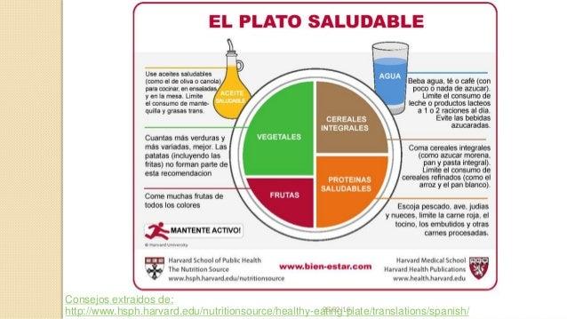 Alimentaci 243 N Saludable Plato Del Bien Comer De La U De