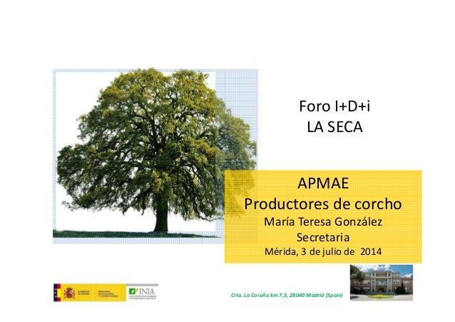 Foro I+D+i LA SECA Crta. La Coruña km 7,5, 28040 Madrid (Spain) APMAE Productores de corcho María Teresa González Secretar...