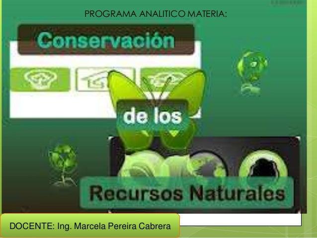 PROGRAMA ANALITICO MATERIA:DOCENTE: Ing. Marcela Pereira Cabrera