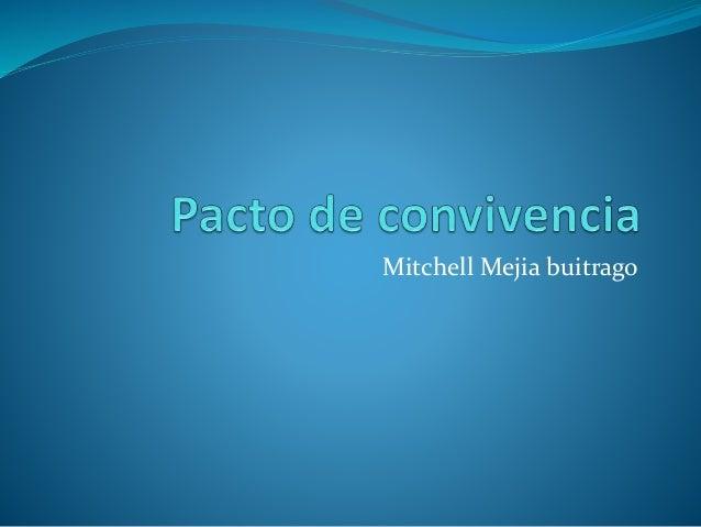 Mitchell Mejia buitrago