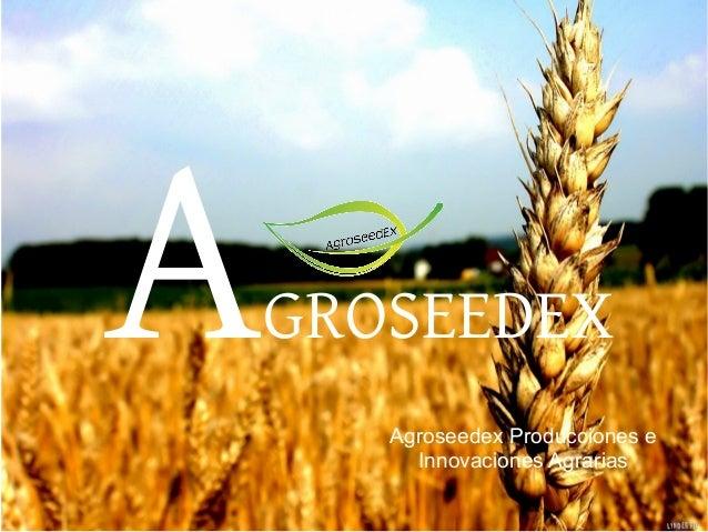 A  GROSEEDEX Agroseedex Producciones e Innovaciones Agrarias