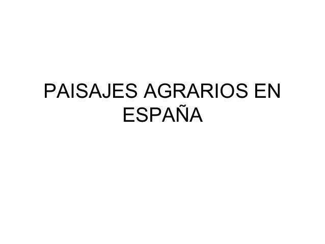 PAISAJES AGRARIOS EN       ESPAÑA