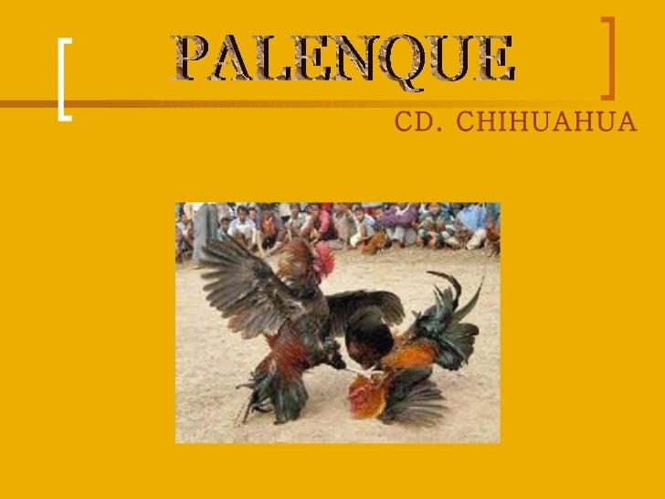 CD. CHIHUAHUA   PALENQUE