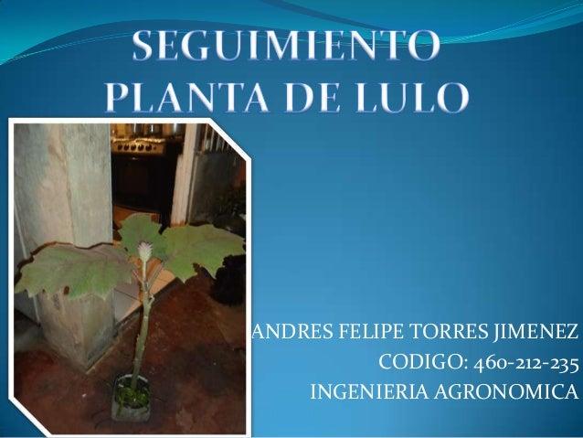 ANDRES FELIPE TORRES JIMENEZ           CODIGO: 460-212-235    INGENIERIA AGRONOMICA