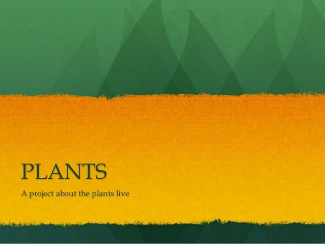 PLANTSA project about the plants live