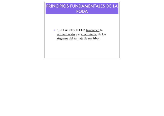 PRINCIPIOS FUNDAMENTALES DE LA PODA  • 1.- El AIRE y la LUZ favorecen la alimentación y el crecimiento de los órganos del ...