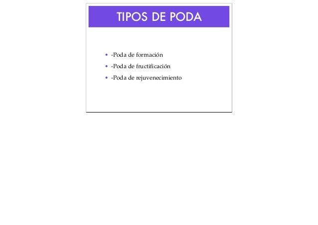 TIPOS DE PODA • -Poda de formación • -Poda de fructificación • -Poda de rejuvenecimiento
