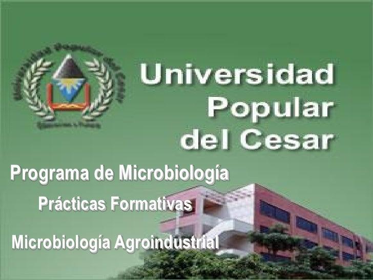 Programa de Microbiología    Prácticas Formativas  Microbiología Agroindustrial