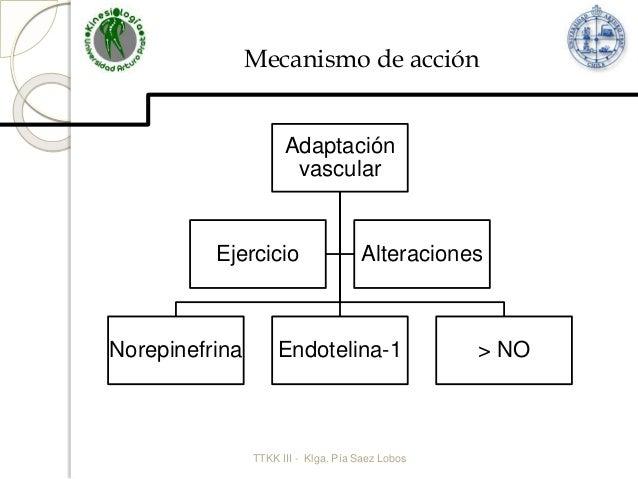 Prescripcion de ejercicio fisico en Hipertension