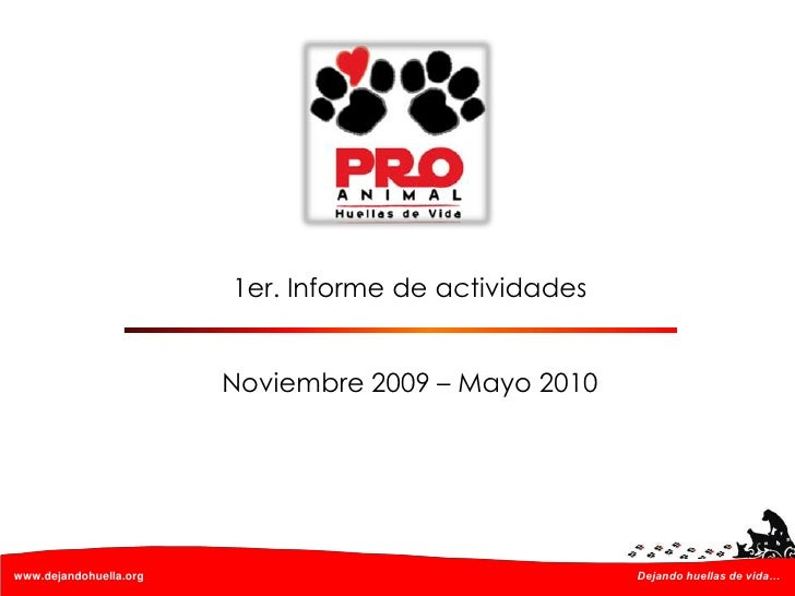 1er. Informe de actividades<br />Noviembre 2009 – Mayo 2010<br />