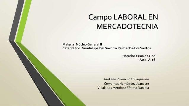 Campo LABORAL EN                  MERCADOTECNIAMateria: Núcleo General IICatedrático: Guadalupe Del Socorro Palmer De Los ...