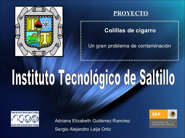 Instituto Tecnológico de Saltillo Adriana Elizabeth Gutiérrez Ramírez Sergio Alejandro Leija Ortiz PROYECTO Colillas de ci...