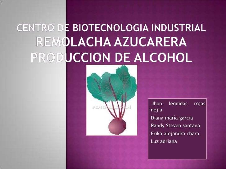 CENTRO DE BIOTECNOLOGIA INDUSTRIALREMOLACHA AZUCARERAPRODUCCION DE ALCOHOL<br />Jhon leonidas rojas mejía<br /> Diana marí...