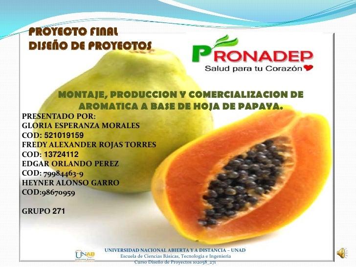 PROYECTO FINAL DISEÑO DE PROYECTOS       MONTAJE, PRODUCCION Y COMERCIALIZACION DE          AROMATICA A BASE DE HOJA DE PA...