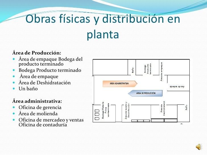 Obras físicas y distribución en                 plantaÁrea de Producción: Área de empaque Bodega del  producto terminado...