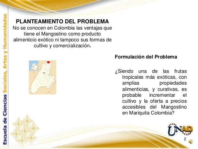 Presentacion proyecto final pps Slide 2
