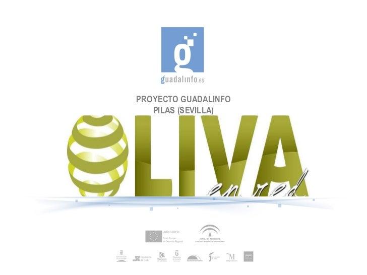 PROYECTO GUADALINFO PILAS (SEVILLA)