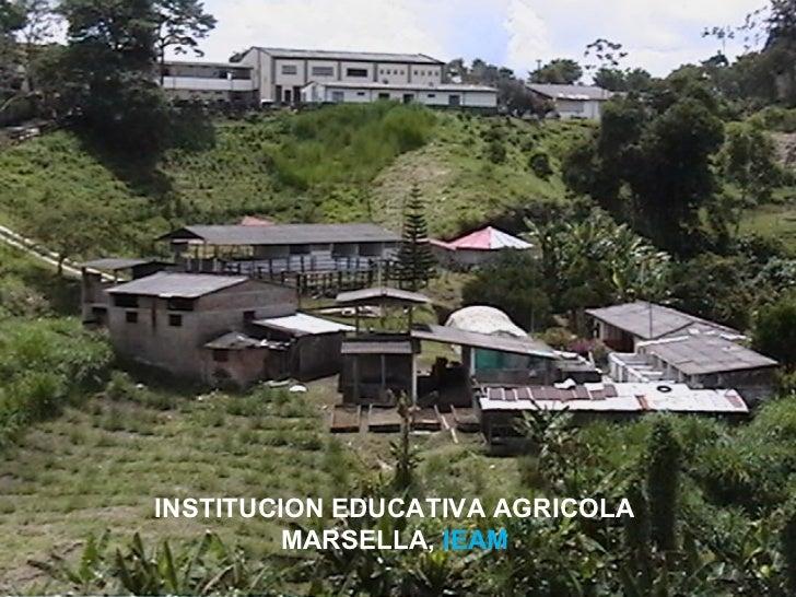 INSTITUCION EDUCATIVA AGRICOLA         MARSELLA, IEAM