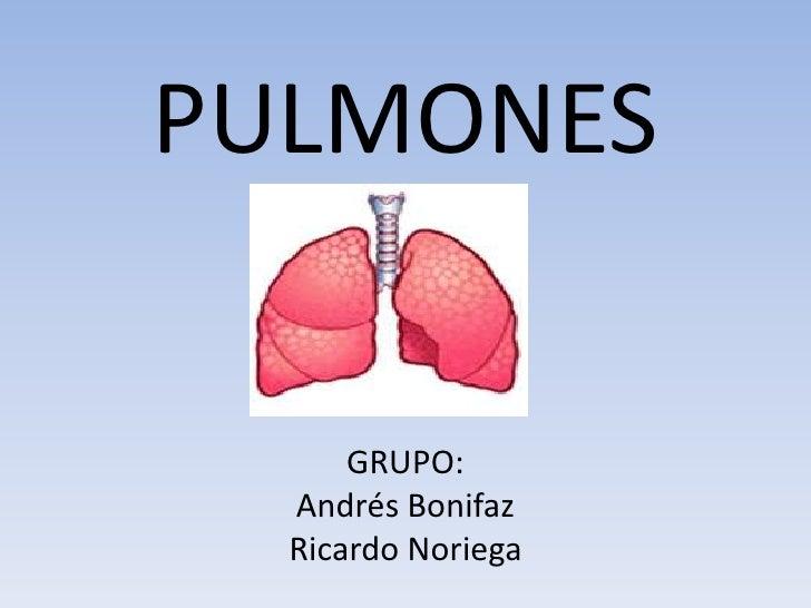 PULMONESGRUPO:Andrés Bonifaz Ricardo Noriega<br />