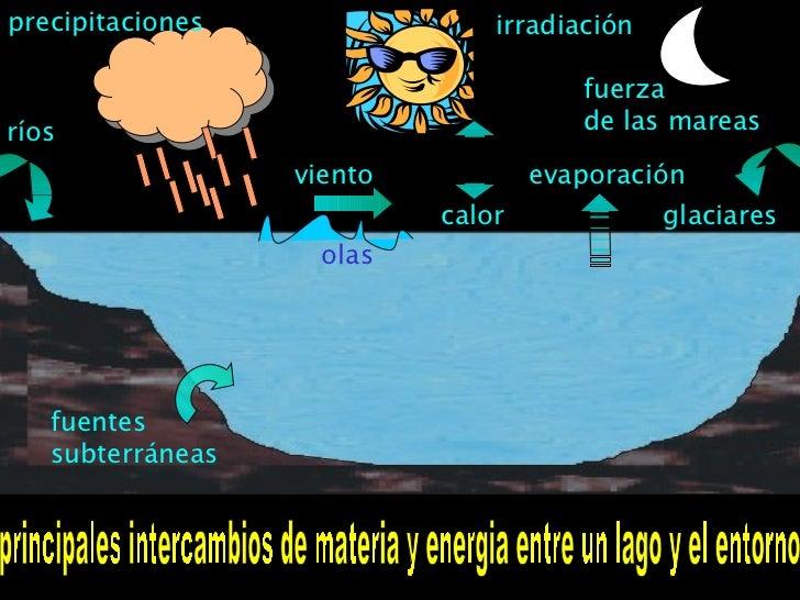 principales intercambios de materia y energia entre un lago y el entorno precipitaciones viento ríos fuerza de las mareas ...