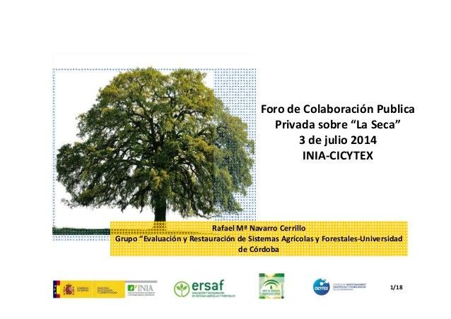"RafaelMªNavarroCerrillo Grupo""EvaluaciónyRestauracióndeSistemasAgrícolasyForestales‐Universidad deCórdoba For..."