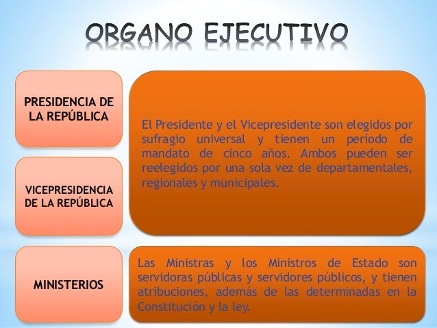 Estructura Del Estado Plurinacional De Bolivia