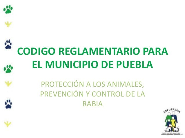 CODIGO REGLAMENTARIO PARAEL MUNICIPIO DE PUEBLAPROTECCIÓN A LOS ANIMALES,PREVENCIÓN Y CONTROL DE LARABIA