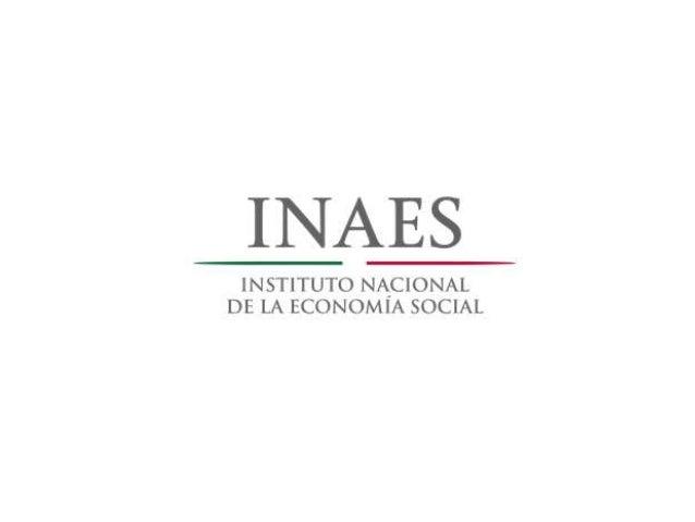 Antecedentes  23 de mayo de 2012, DOF la LESS, creación el Instituto Nacional de la Economía Social.  Instrumentar polít...