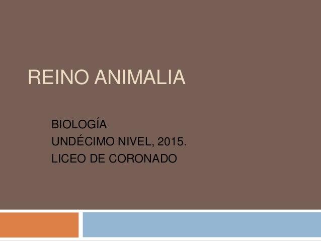 REINO ANIMALIA BIOLOGÍA UNDÉCIMO NIVEL, 2015. LICEO DE CORONADO