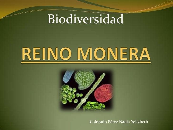 Biodiversidad       Colorado Pérez Nadia Yelizbeth