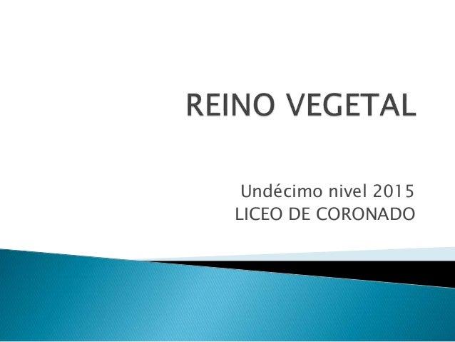 Undécimo nivel 2015 LICEO DE CORONADO