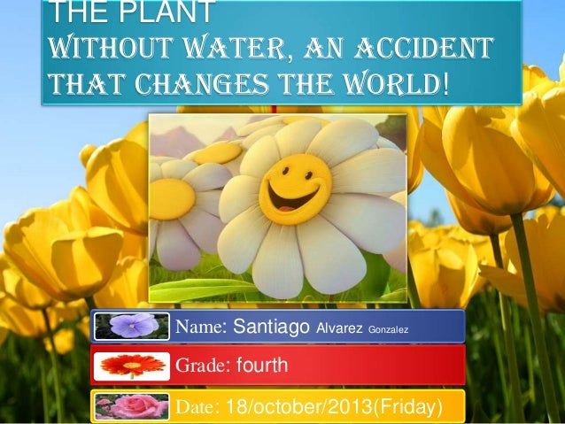THE PLANT without water, an accident that changes the world!  Name: Santiago Alvarez Gonzalez  Grade: fourth  Date: 18/oct...
