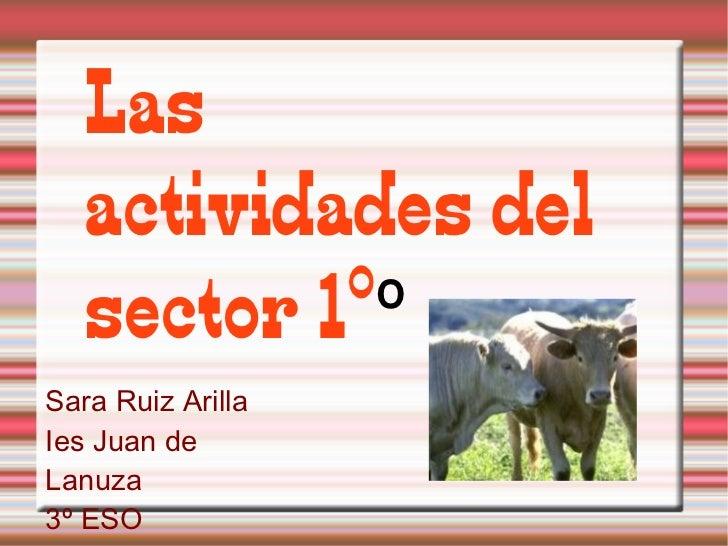 Las actividades del sector 1º º Sara Ruiz Arilla Ies Juan de Lanuza 3º ESO