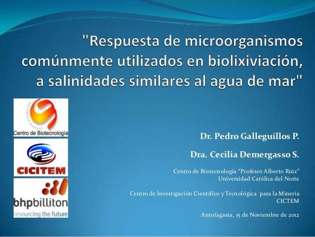 "Dr. Pedro Galleguillos P.                      Dra. Cecilia Demergasso S.                Centro de Biotecnología ""Profesor..."