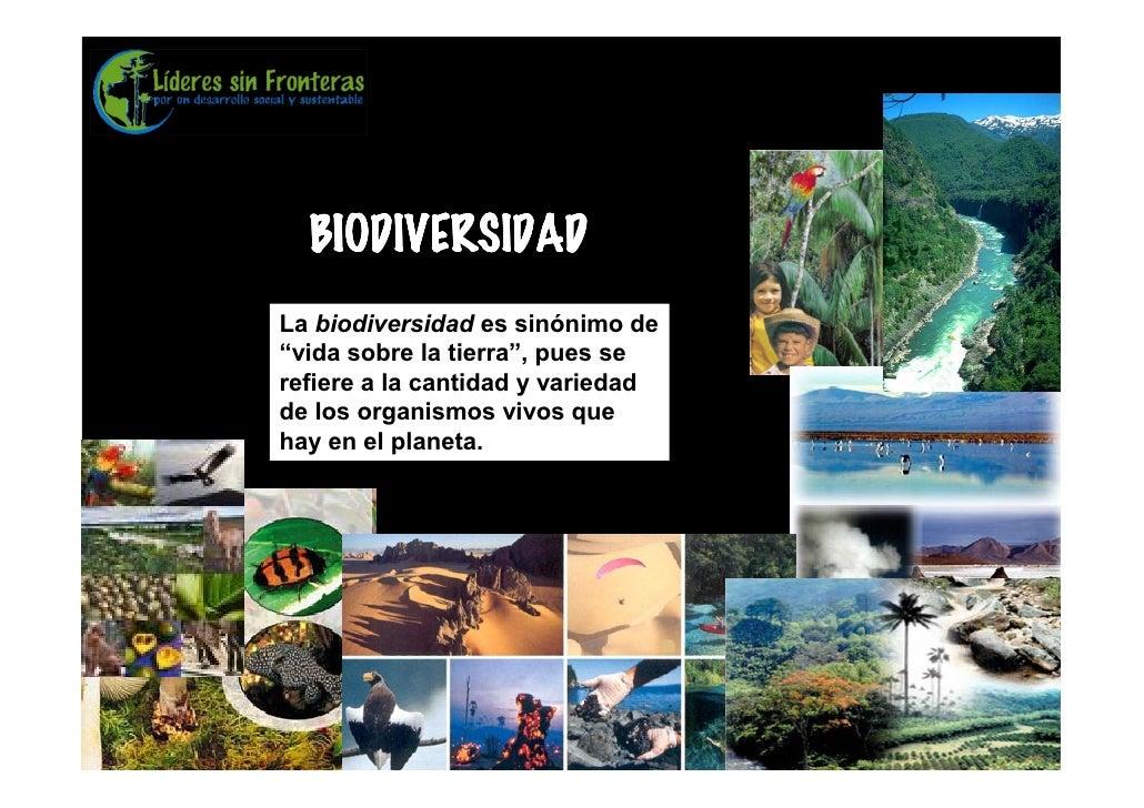 """BIODIVERSIDAD La biodiversidad es sinónimo de """"vida sobre la tierra"""", pues se refiere a la cantidad y variedad de los orga..."""