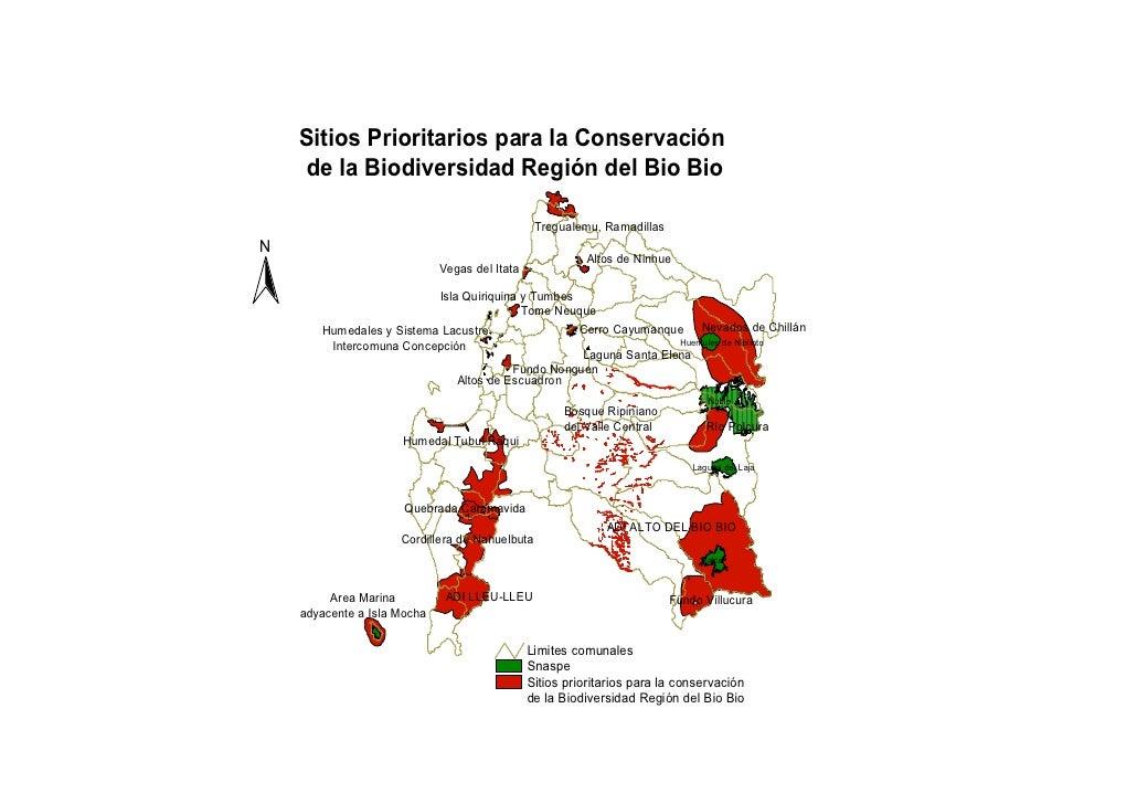 Sitios Prioritarios para la Conservación      de la Biodiversidad Región del Bio Bio                                      ...