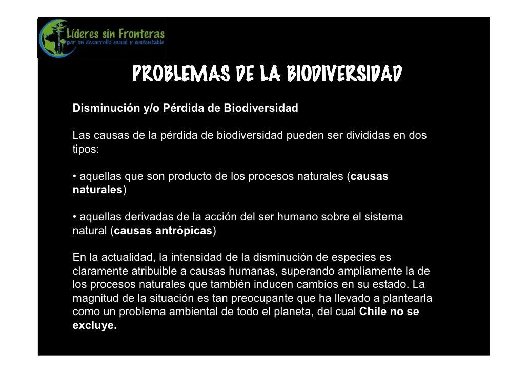 PROBLEMAS DE LA BIODIVERSIDAD Disminución y/o Pérdida de Biodiversidad  Las causas de la pérdida de biodiversidad pueden s...