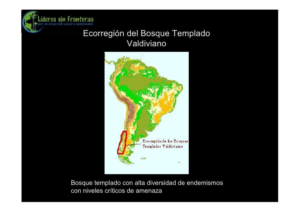 Ecorregión del Bosque Templado               Valdiviano     Bosque templado con alta diversidad de endemismos con niveles ...