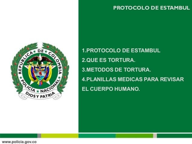 Presentacion sobre el protocolo de estambul Slide 2