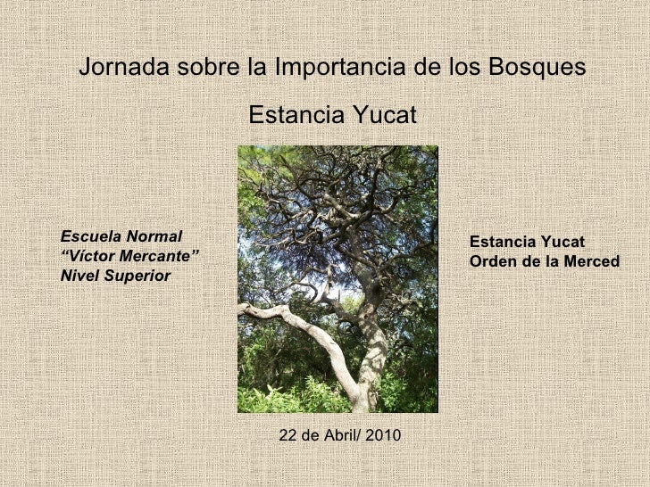 "Jornada sobre la Importancia de los Bosques Estancia Yucat Escuela Normal ""Víctor Mercante"" Nivel Superior Estancia Yucat ..."