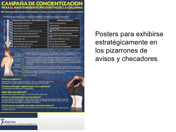 SOPORTES BODYLITEX PRESENTACION PARA EMPRESAS